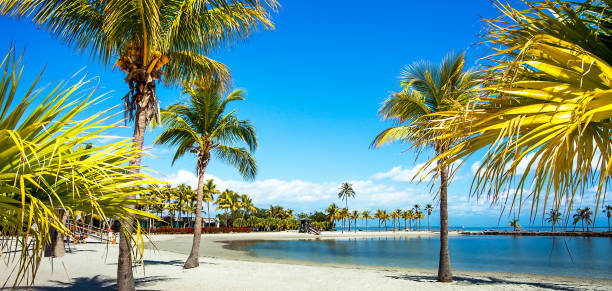 The Round Beach at Matheson Hammock County Park Miami Florida stock photo