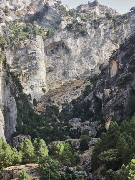The route of the borosa river in the sierra de cazorla segura and the picture id1240218000?b=1&k=6&m=1240218000&s=612x612&w=0&h=1jzrgpvjzxhig68aegu145c5z3mdycbxbiaiweobh04=