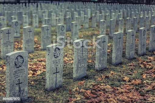 istock The Royal Canadian Regiment and The First World War - 1914-1919 Montreal Mount Royal Cemetery during a Cold Cloudy Evening of Autumn 894667970
