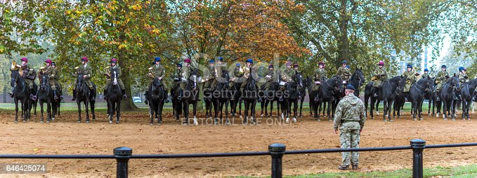 istock The royal horseguard parade band 646425074