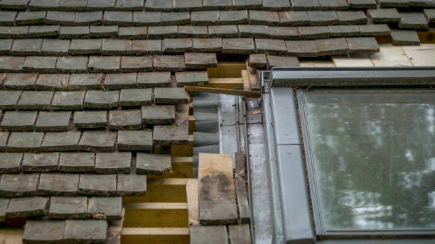 Best Damaged Roofing Felt Stock Photos, Pictures & Royalty-Free
