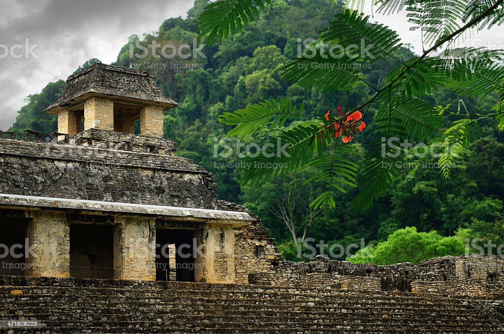 The ruins of ancient Mayan city Palenque, Mexico royalty-free stock photo