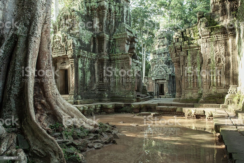 The ruins of Ta Prom Temple, Cambodia. stock photo