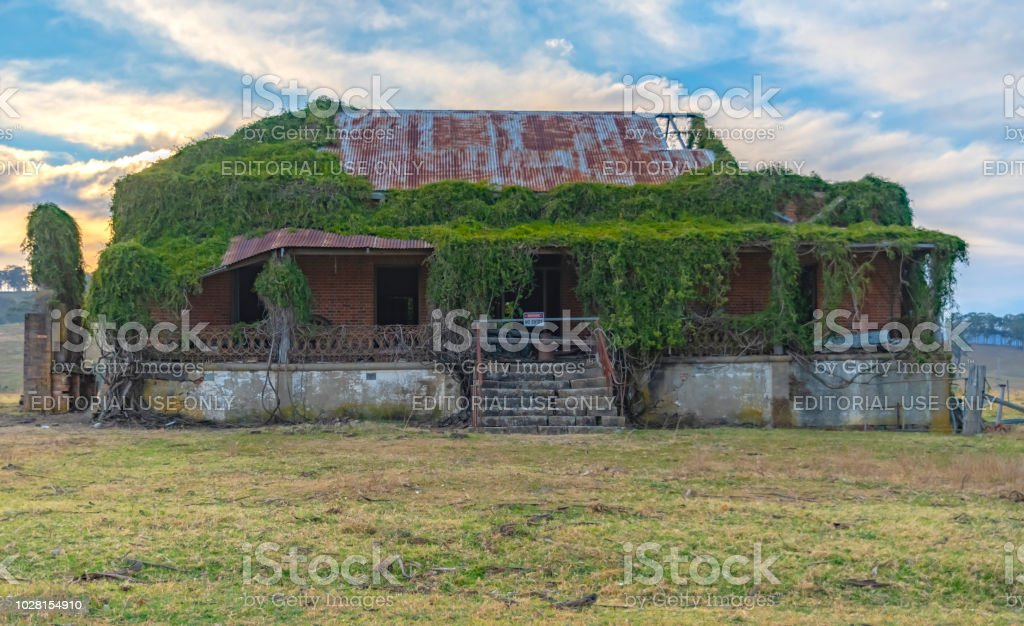 The ruins of the original Clevedon Homestead stock photo