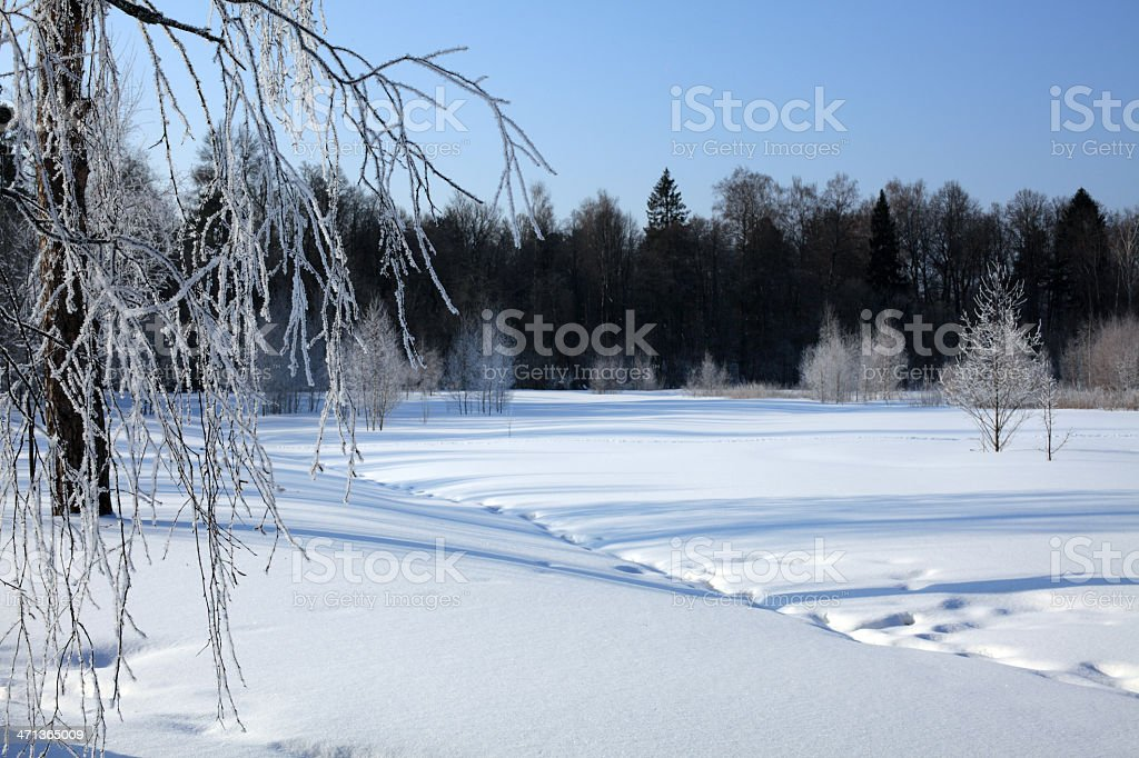 The Russian Winter royalty-free stock photo