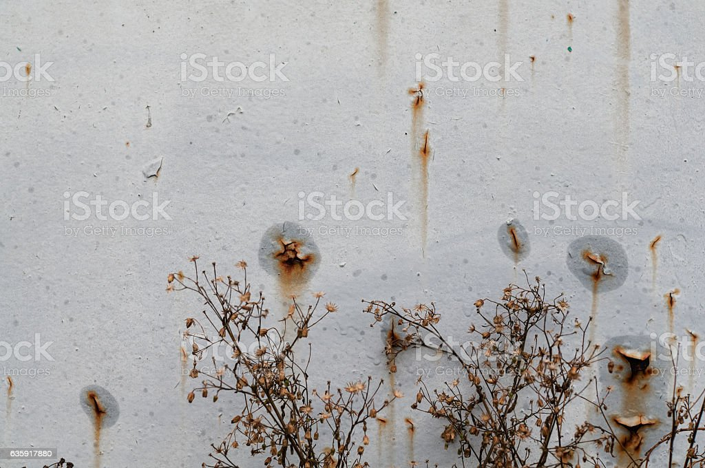 The rust on metal background. stock photo