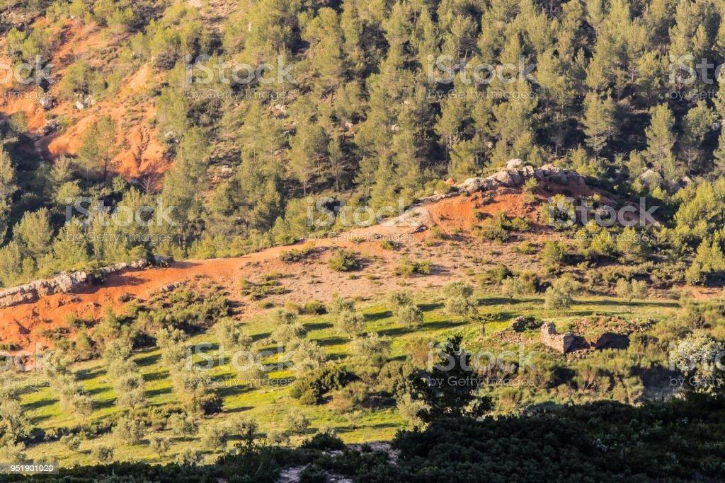 the Sainte Victoire mountain stock photo