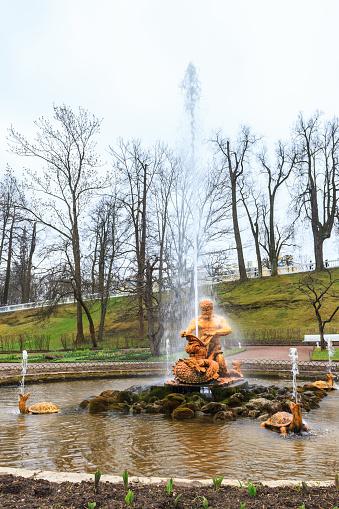 Samson Fontänen I Den Palace Garden Av Peterhof-foton och fler bilder på Arkitektur