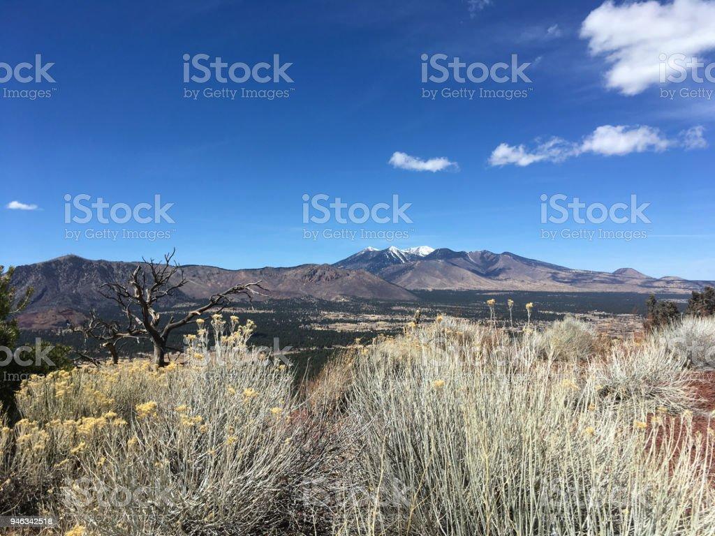 The San Francisco Peaks stock photo