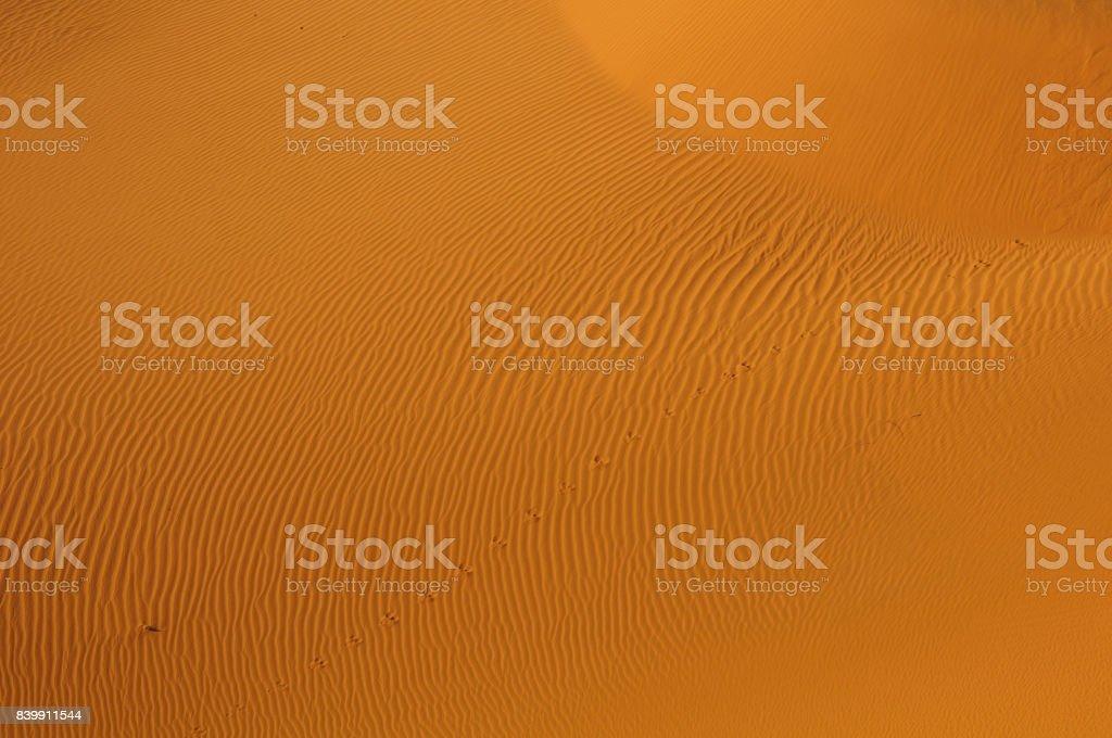 The sand sea stock photo