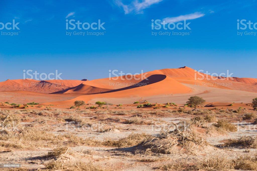 The scenic Sossusvlei and Deadvlei royalty free stockfoto