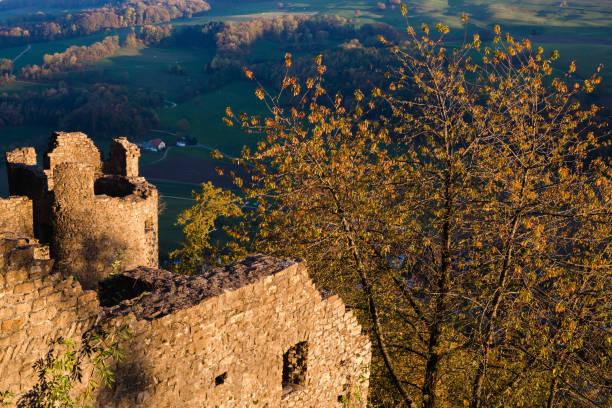 die Ruine Schenkenberg – Foto