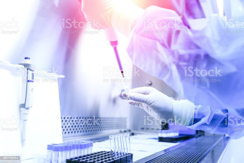 The scientist experimented in the laboratory stock photo