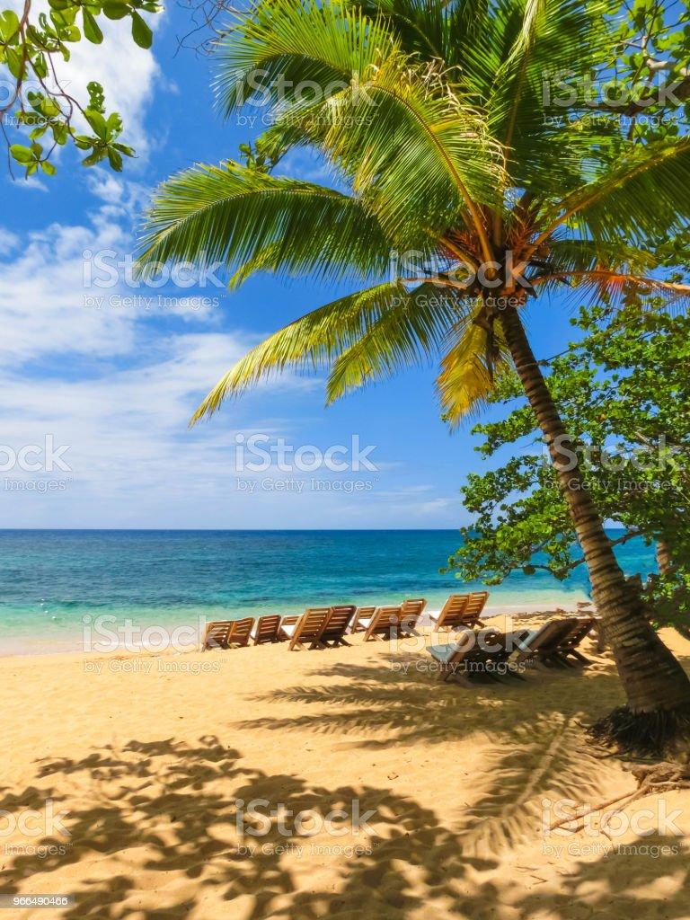 El mar y la arena en la playa de bambú en Jamaica - foto de stock