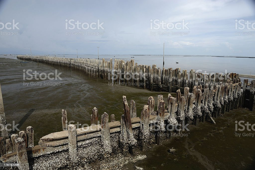 the sea barrier to protect against erosion, Thailand. royalty-free stock photo