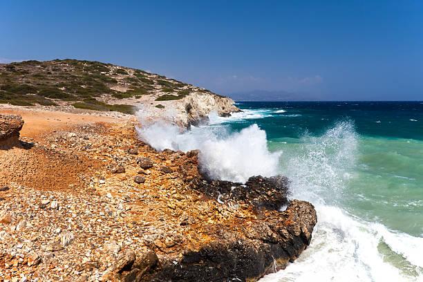 The sea coast stock photo