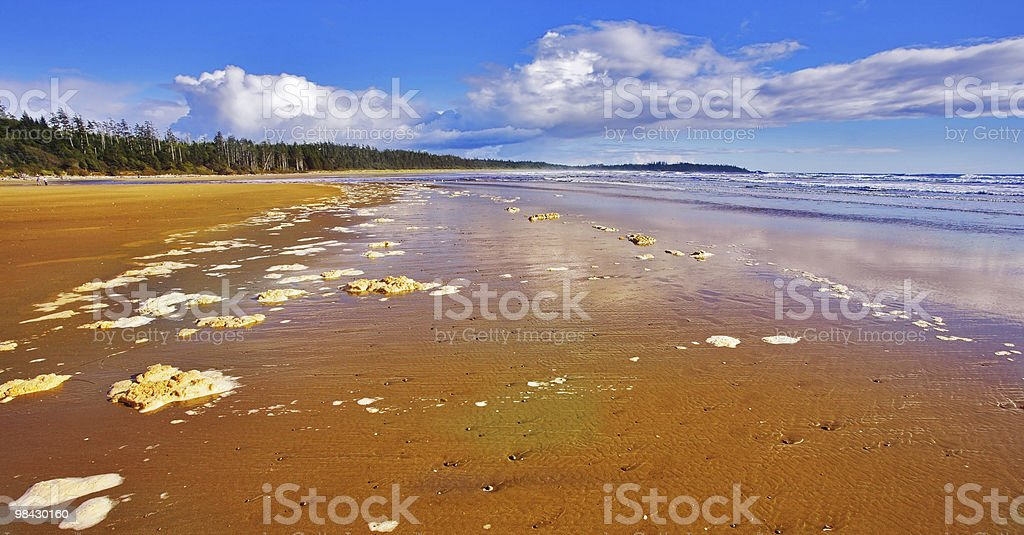 The sea foam on sand royalty-free stock photo