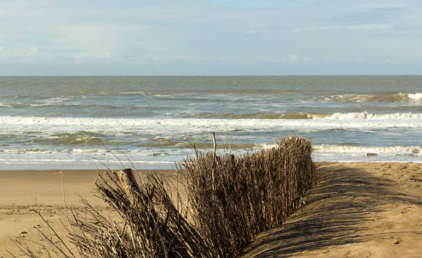 El mar en invierno - foto de stock