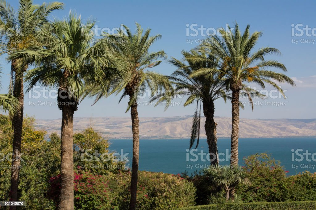 Der See Genezareth – Foto