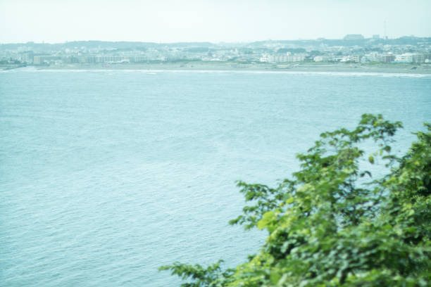 日本海。 ストックフォト