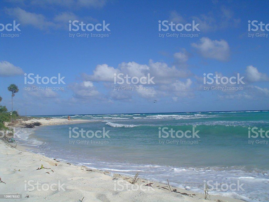 The sea royalty-free stock photo
