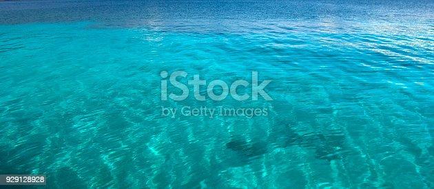 Rippled Sea Surface