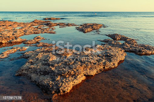 The seashore in the evening, large volcanic rocks washed by blue sea water and illuminated by the yellow sun. The sea is calm and smooth, uneven texture of stone in the foreground