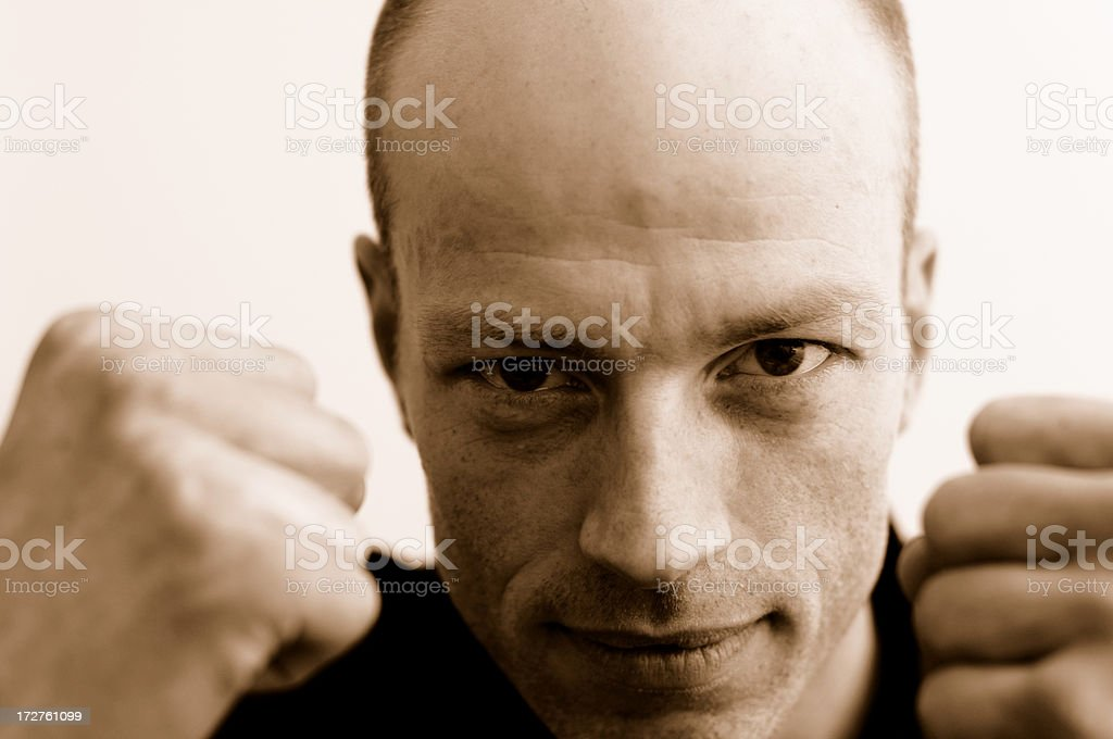the sepia fist royalty-free stock photo