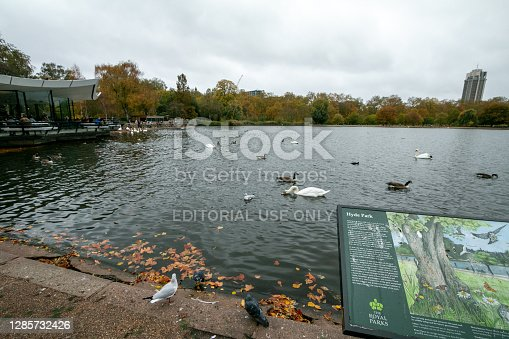 Hyde Park in City of Westminster, London, with part of the Hyde Park information sign visible with an illustration on it. The Serpentine is the body of water.