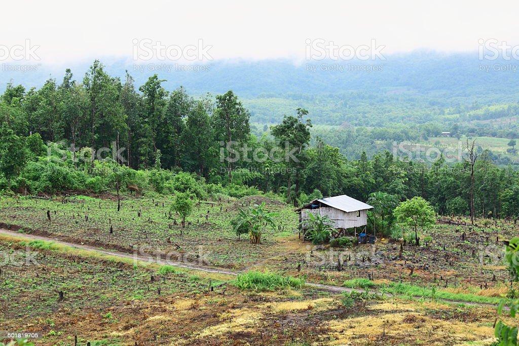 The shack of agriculturist on their farm stock photo