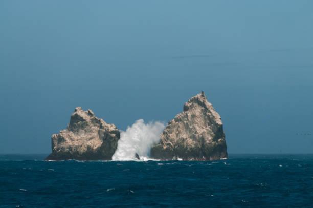 The Shag Rocks stock photo