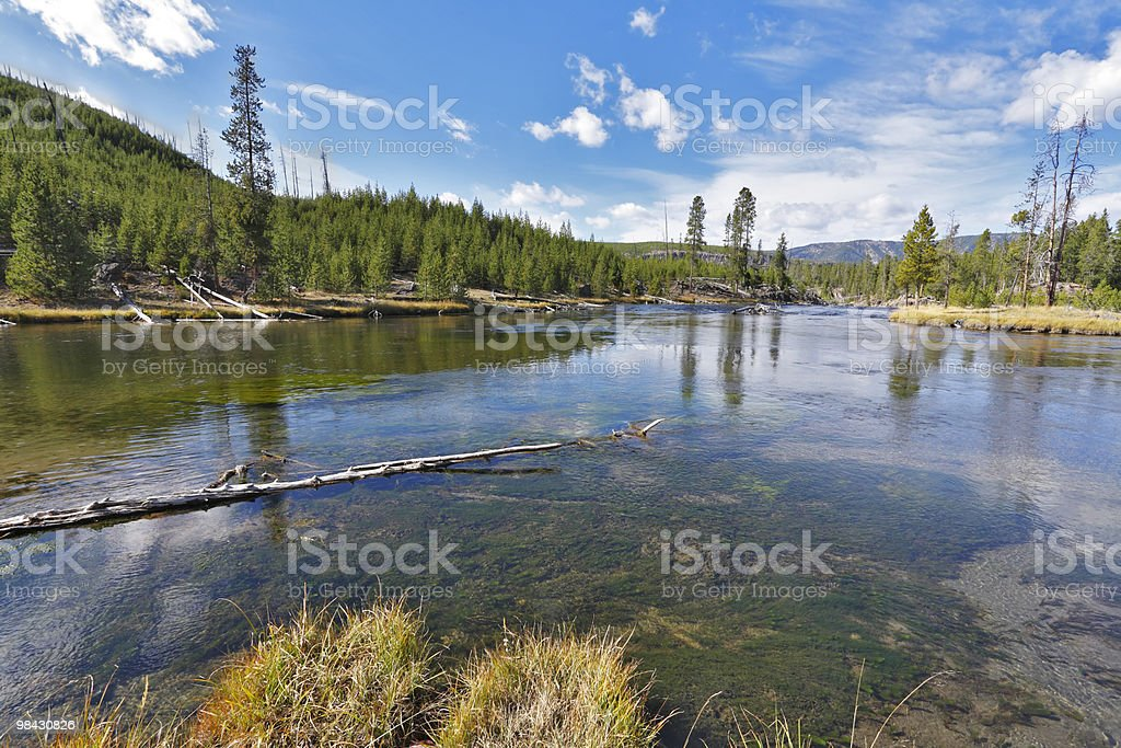 The shallow northern river royalty-free stock photo