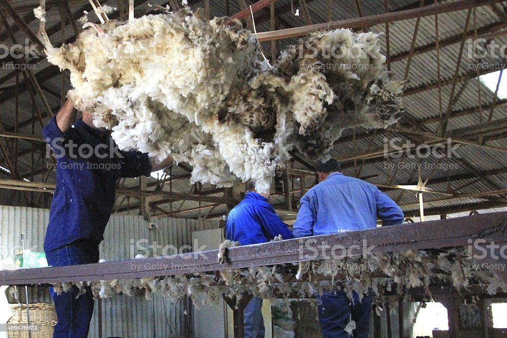 The Shearing Shed stock photo