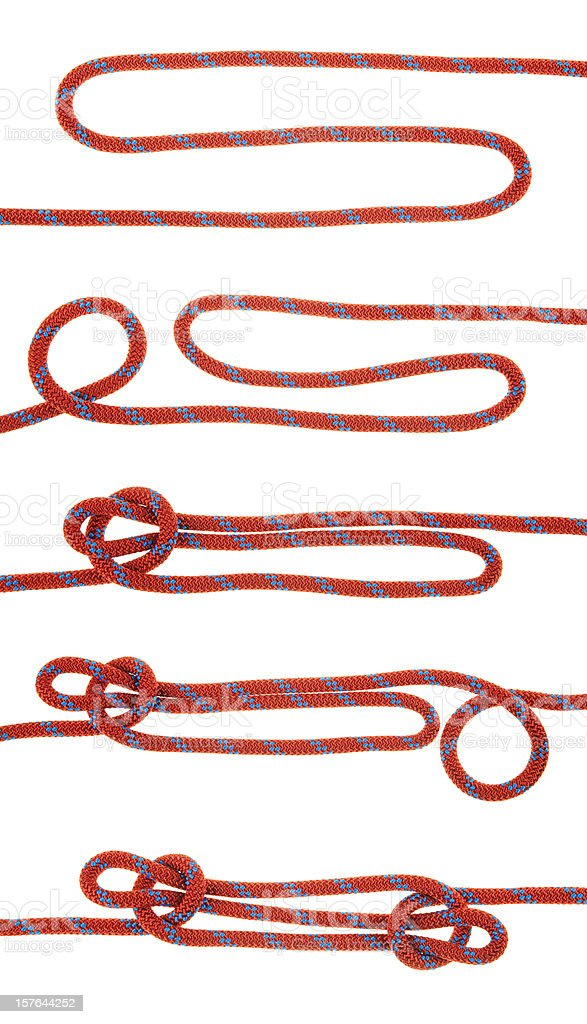 The Sheepshank Knot stock photo