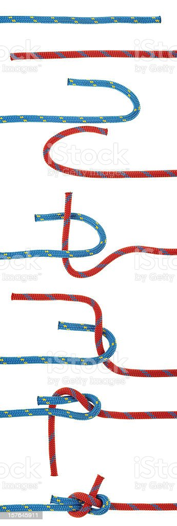 The Sheet Bend stock photo