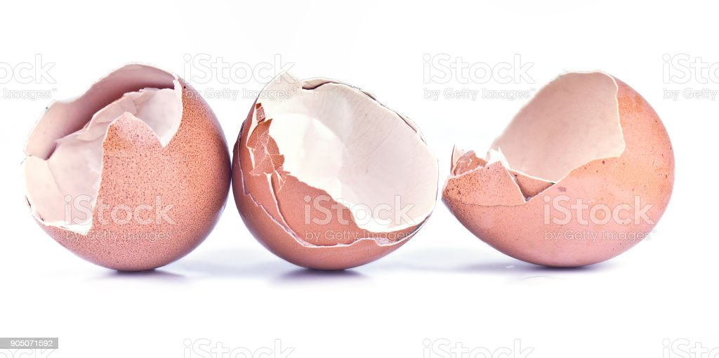 The shell of chicken eggs stock photo