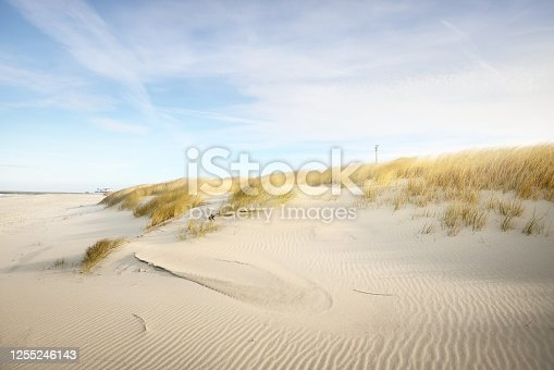 istock The shore (desert) of Anholt island under the bright blue sky with cirrus clouds. Sand dunes and plants (Ammophila) close-up. Environmental conservation, eco tourism theme. Kattegat, Denmark 1255246143