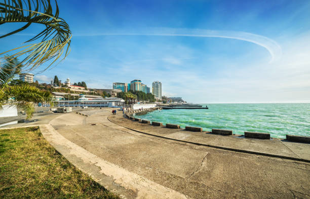 The shore of the emerald Black Sea in Sochi The shore of the emerald Black Sea in Sochi, the curve of the embankment and the curl of a white cloud against a blue sky sochi stock pictures, royalty-free photos & images