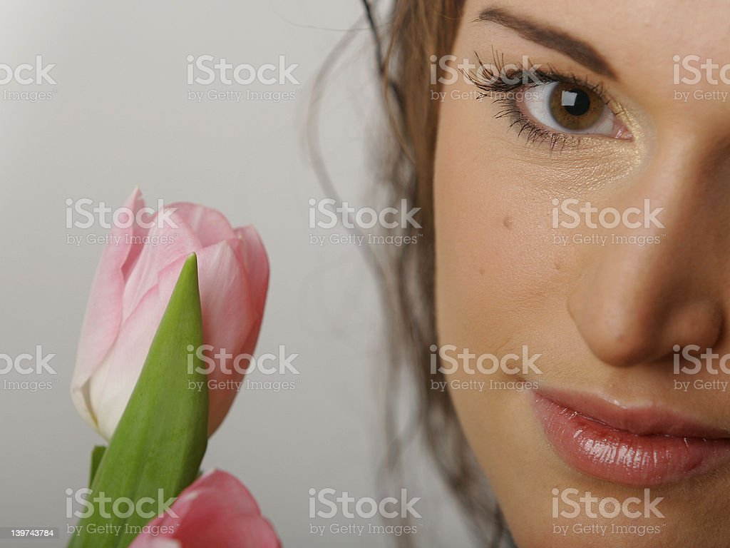 the sight and the tulip royalty-free stock photo