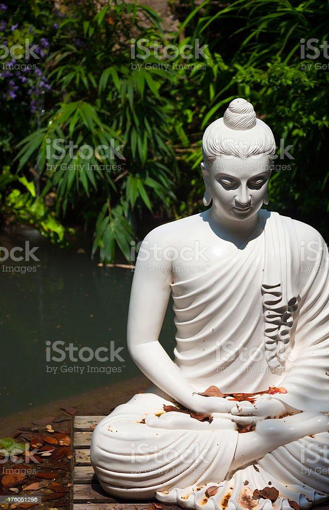 The silence of buddha stock photo