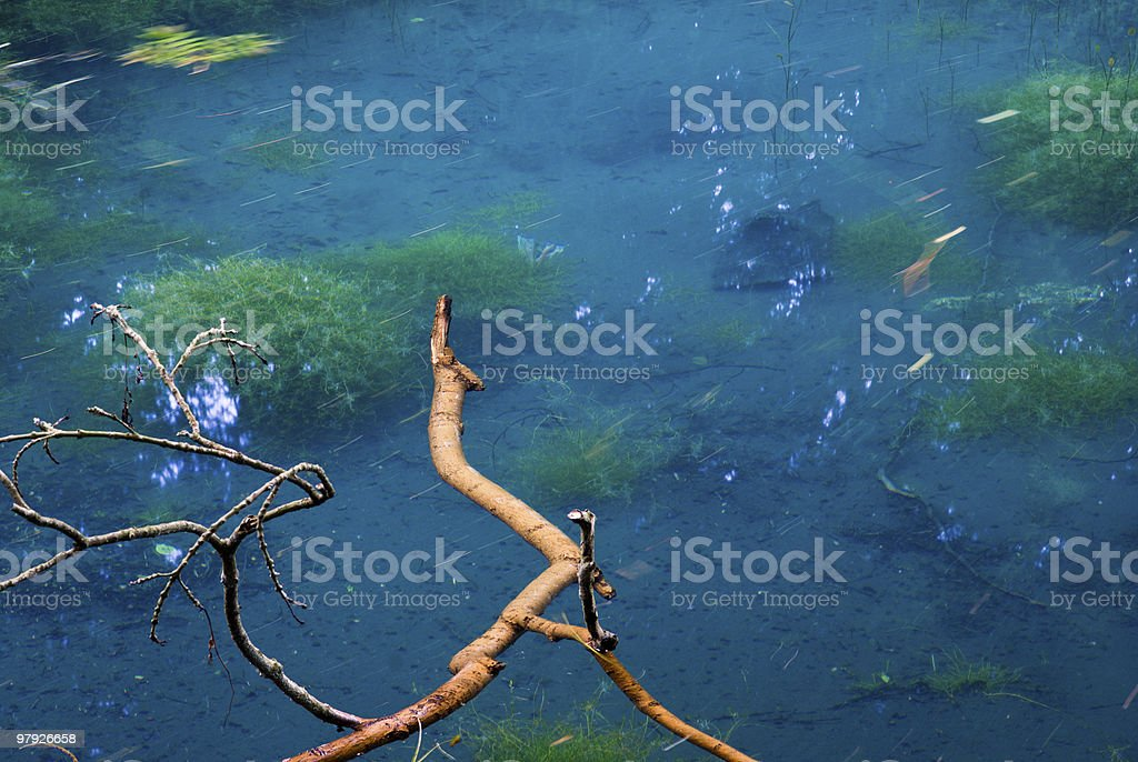 The Silent Pool royalty-free stock photo
