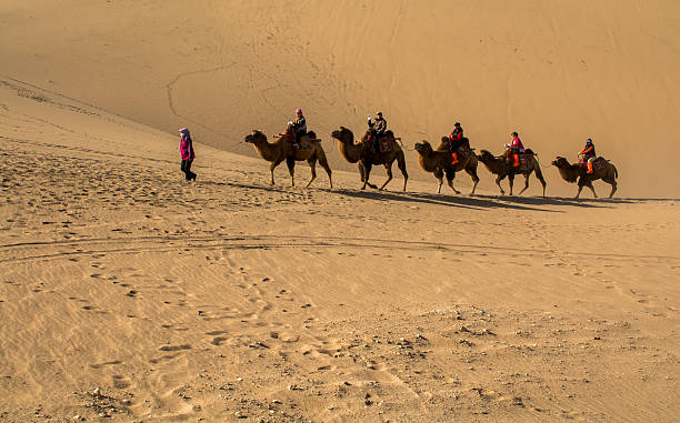 The Silk Road Dunhuang,Gansu, China - October 11, 2014: Group of tourists are riding camels in the desert at Dunhuang City , China. This place is a part of silk road in the history. silk road stock pictures, royalty-free photos & images
