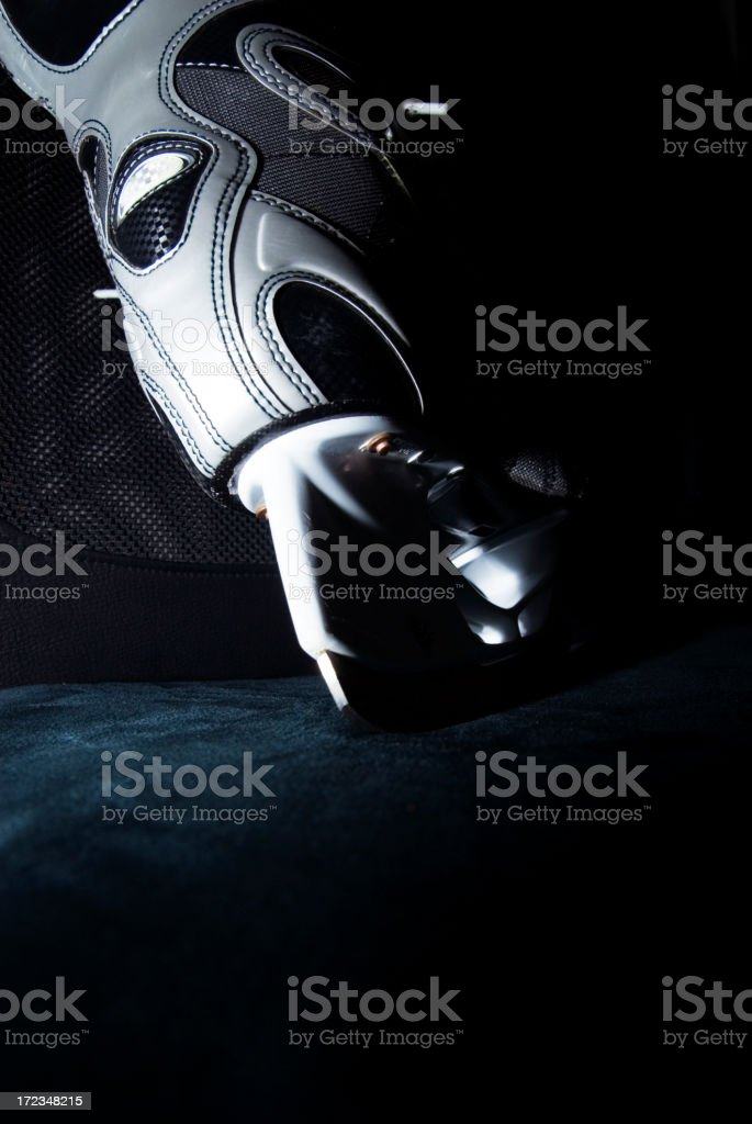 The Skate royalty-free stock photo