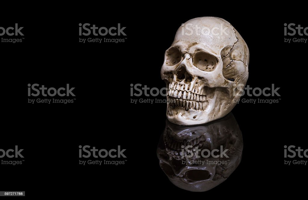 The skull on black background with reflection royalty-free stock photo