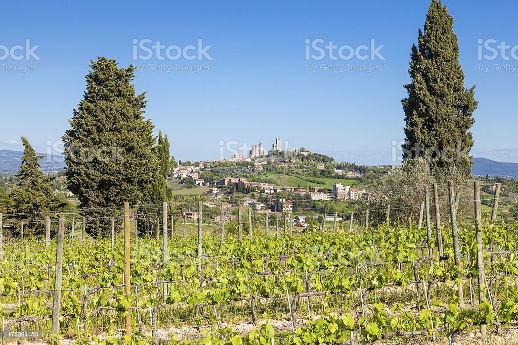 The skyline of San Gimignano, Tuscany stock photo