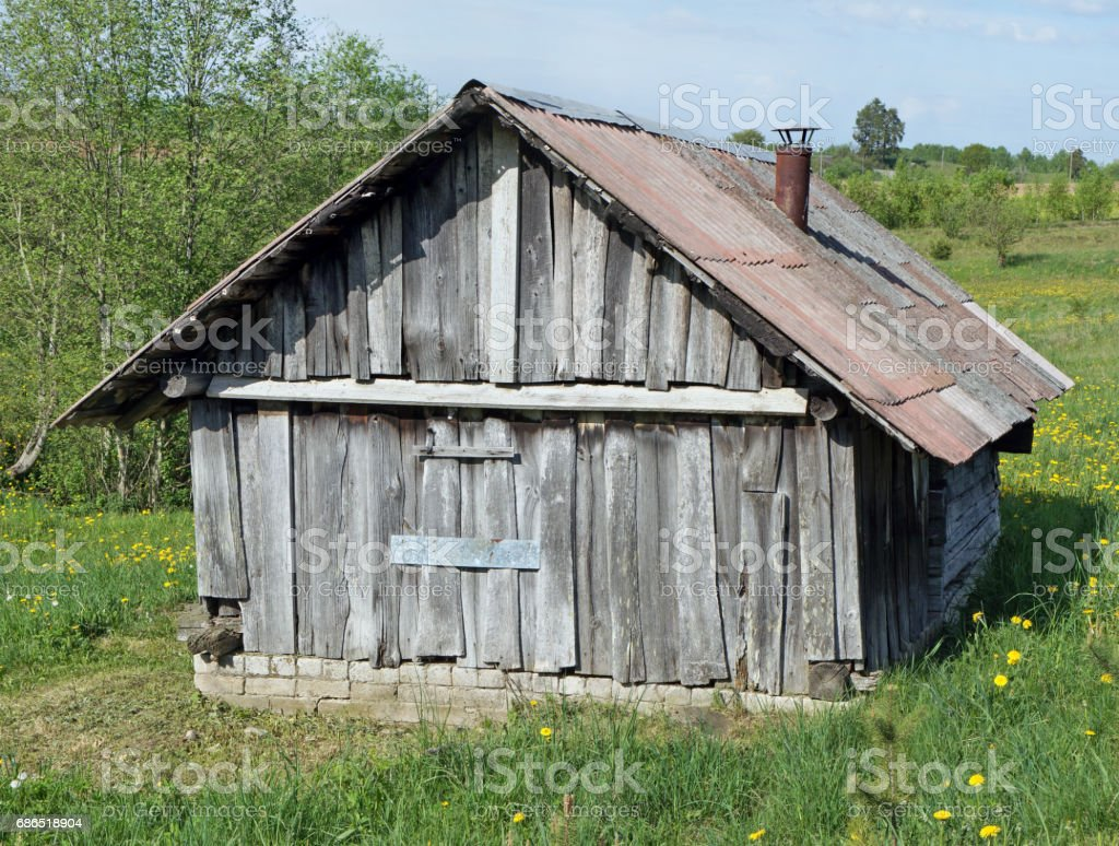The small broken no name wooden rural shed is located in the wood on a glade with dandelions zbiór zdjęć royalty-free