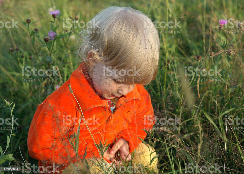 The small girl in a grass royalty-free stock photo