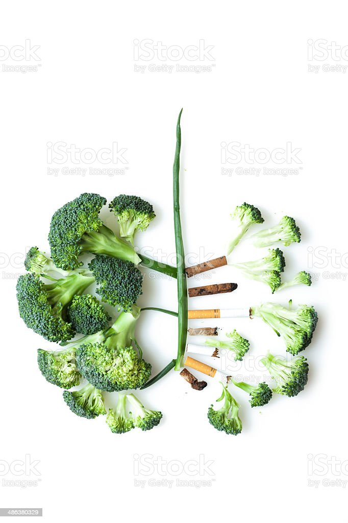 The smoker's lungs stock photo