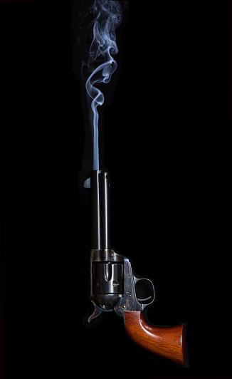 The Smoking Gun by Polyscience - Handheld Food Smoker