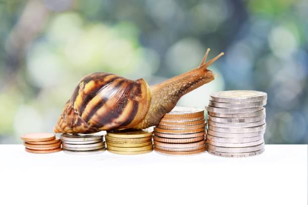 de slak klimmen van de stapel van munten - langzaam stockfoto's en -beelden